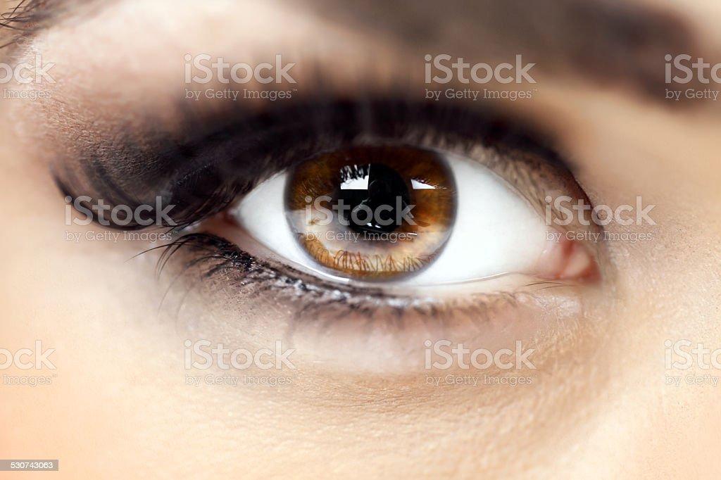 Woman's brown eye stock photo