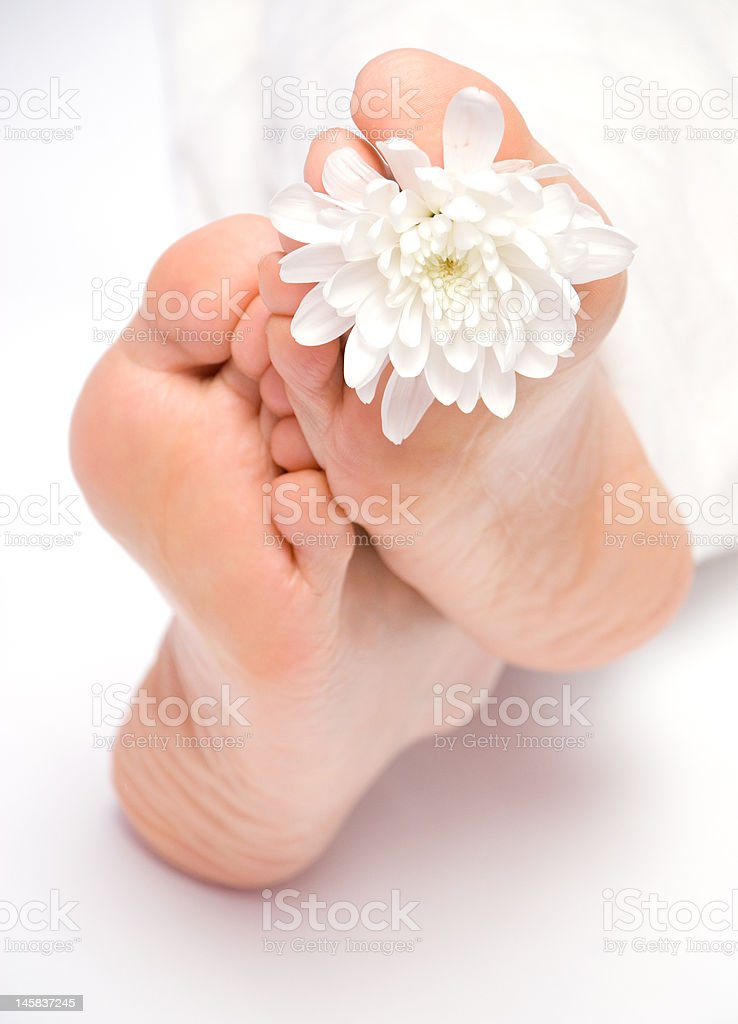 Woman's feet under the blanket royalty-free stock photo