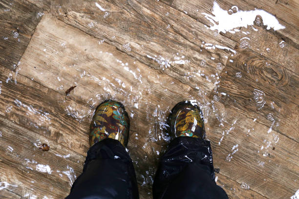 pies de mujer con botas impermeables, de pie en una casa inundada con pisos de madera de vinilo. - dañado fotografías e imágenes de stock