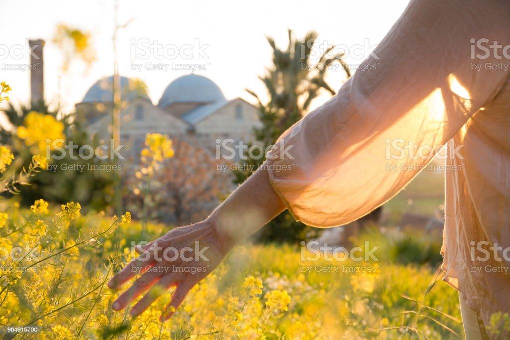 Woman's hand brushes flower on hillside royalty-free stock photo