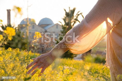 Womans Hand Brushes Flower On Hillside Stock Photo & More Pictures of 50-54 Years