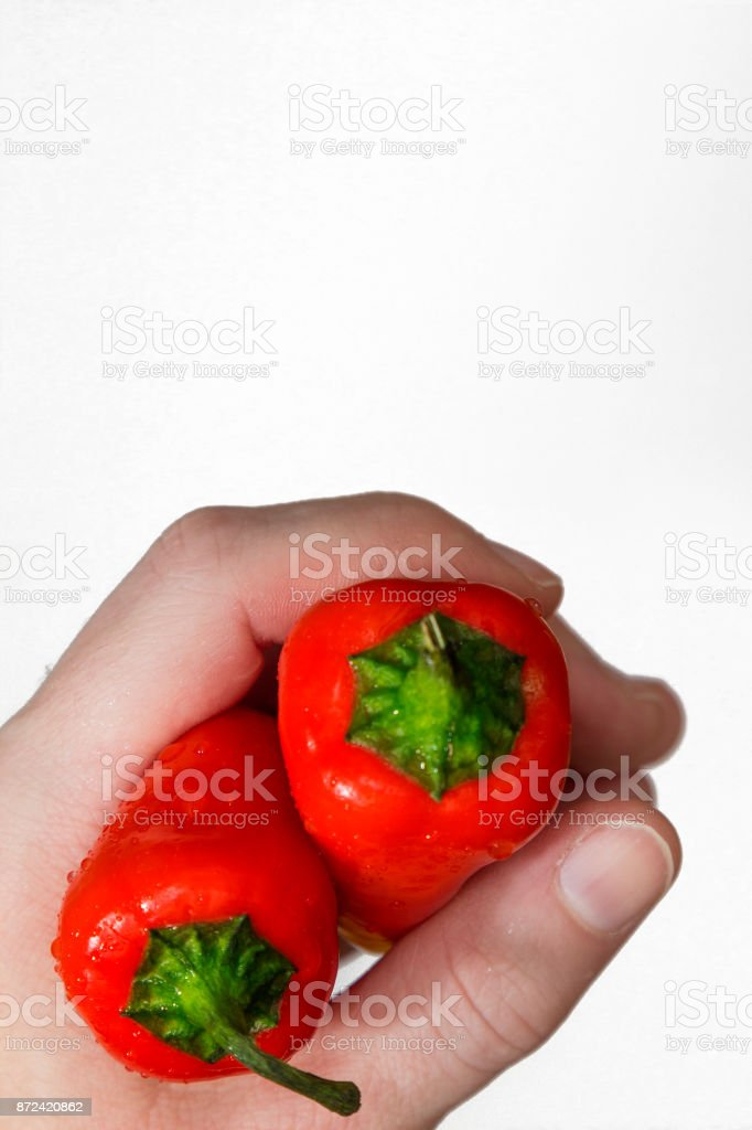 Woman's hand clasping juicy red capsicums on a white background. View from above. Healthy eating. Food photography. stock photo