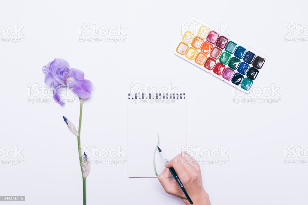 Woman's hand draws a flower in a notebook with watercolors royalty-free stock photo