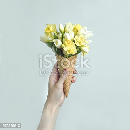 680461500 istock photo Woman's hand holding a waffle cone with spring yellow flowers bouquet on the mint background. Flat lay, top view. Mothers day, anniversary, greetings. 979579510