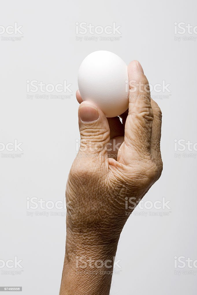 Woman's hand holding an egg royalty-free stock photo