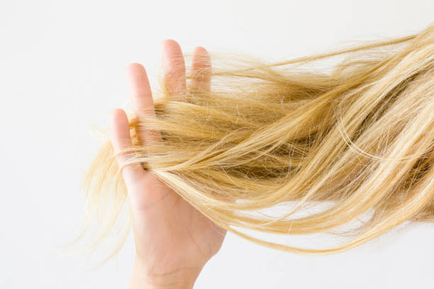 woman's hand holding dry, blonde, tangled hair on the light gray background. hair problem and solution. daily women's issues. - capelli ossigenati foto e immagini stock