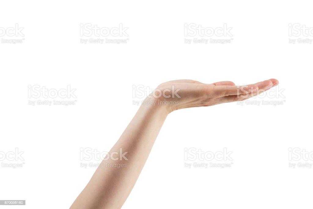 Frau Hand hält - isoliert mit Beschneidungspfad – Foto