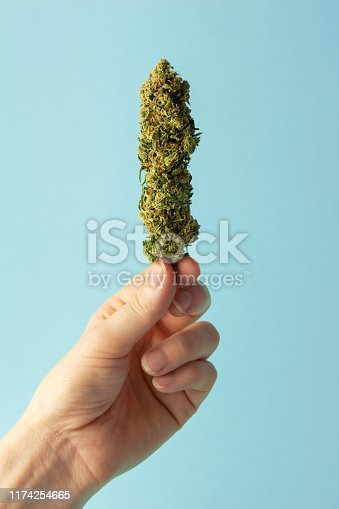 An anonymous woman's hand holding a cannabis bud. The flower could be from medical marijuana or a hemp plant. On a solid light blue background with lots of copy space.