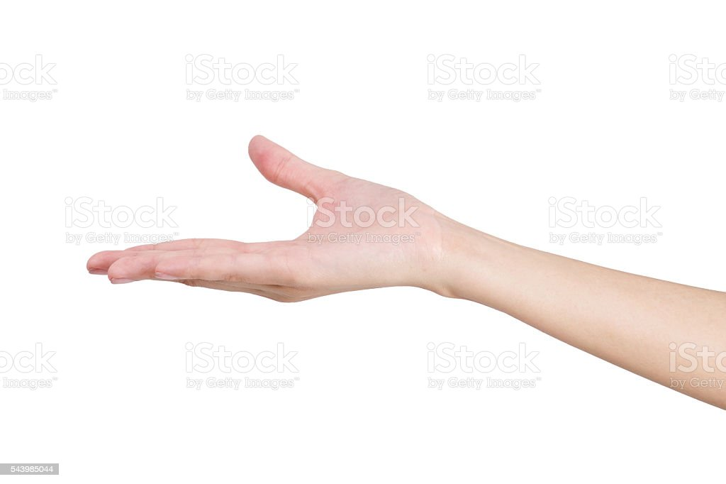 d03ee6c3f6de9 Woman's hand holding something empty, isolated on white background. royalty-free  stock photo