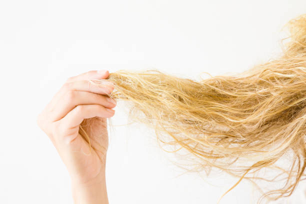 woman's hand holding wet, blonde, tangled hair after washing on the white background. hair problem and solution. daily women's issues. - capelli ossigenati foto e immagini stock