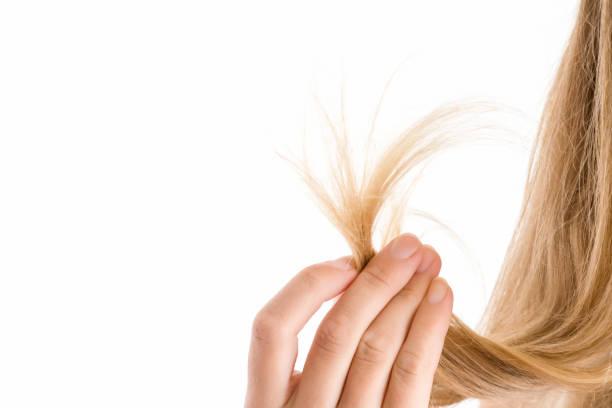 傷んだ髪が終了を示す女性の手は白い背景上に分離。健康的できれいな髪を気にします。ビューティー サロン。テキストに空の場所。 - 人の髪 ストックフォトと画像