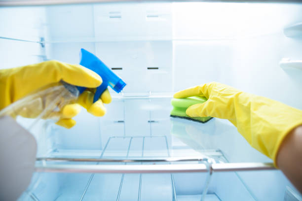 Woman's Hand Wearing Yellow Gloves Cleaning Open Refrigerator Close-up Of Woman's Hand Wearing Yellow Gloves Cleaning Open Refrigerator With Spray Bottle And Sponge fridge stock pictures, royalty-free photos & images