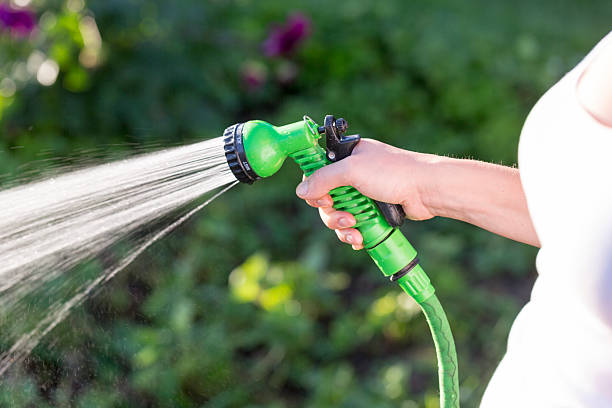 woman's hand with garden hose watering plants, gardening concept - garden hose stock pictures, royalty-free photos & images