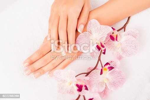 istock woman's hand with manicure and flower of orchid 622288288