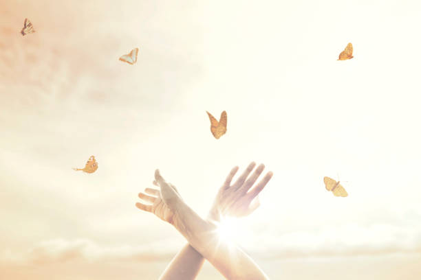 woman's hands dance in harmony with some butterflies in the middle of nature stock photo