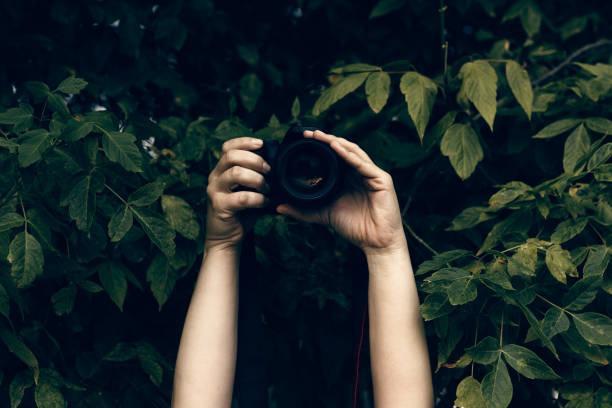 Womans hands holding camera and snapping photos hidden in the bushes picture id944097350?b=1&k=6&m=944097350&s=612x612&w=0&h=sv uoh3qkbbhrsdmqp1494lodltd odsomljmuojwgk=