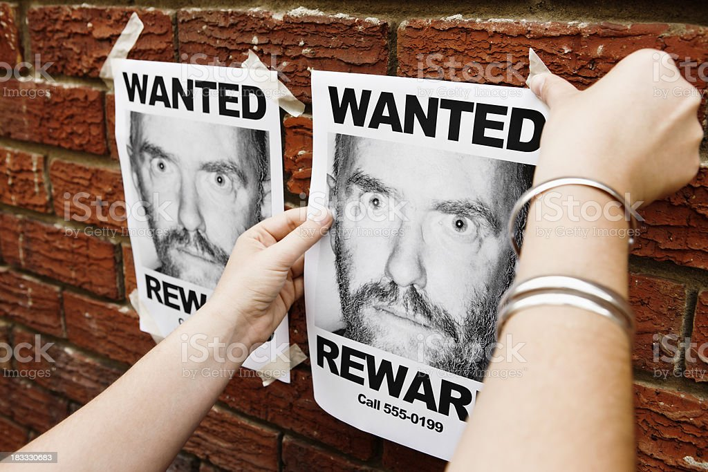 Woman's hands pin 'Wanted' mug shot to brick wall royalty-free stock photo