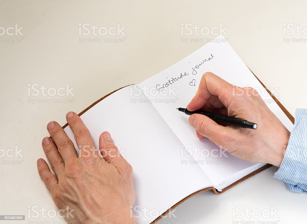 Woman's hands writing in gratitude journal stock photo
