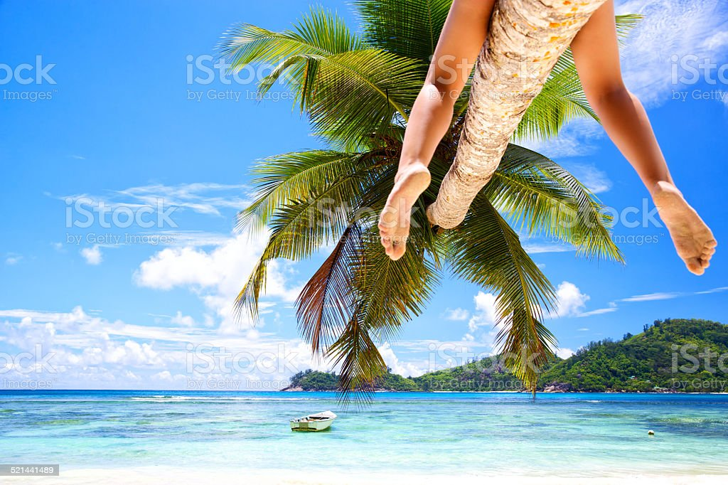 Woman's legs on palm stock photo