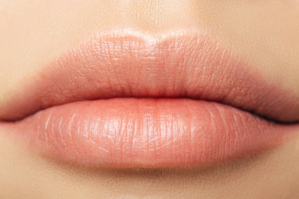 womans lips - human lips stock photos and pictures