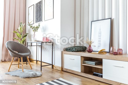 Grey chair on fur near wooden cupboard with flowers in pink pot and books in woman's living room with poster