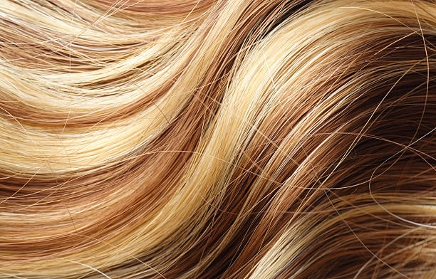 A woman's long blonde wavy hair long hair as background highlights hair stock pictures, royalty-free photos & images