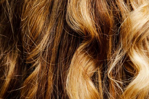 Blond Braune Strähnen Bilder Und Stockfotos Istock