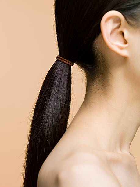 woman's ponytail - ear stock photos and pictures