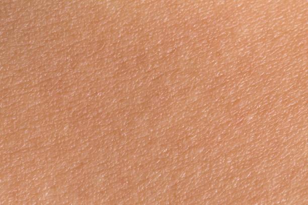 Woman's skin Woman's skin texture. Human skin closeup. Human skin background. human skin stock pictures, royalty-free photos & images