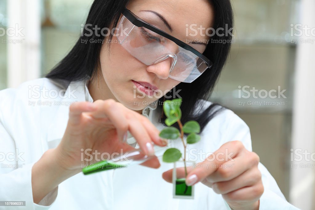 Woman-scientist working in laboratory royalty-free stock photo