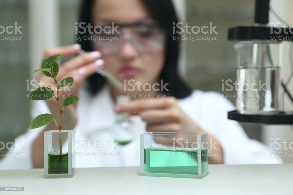 Woman-scientist works with liquid chemical agent royalty-free stock photo