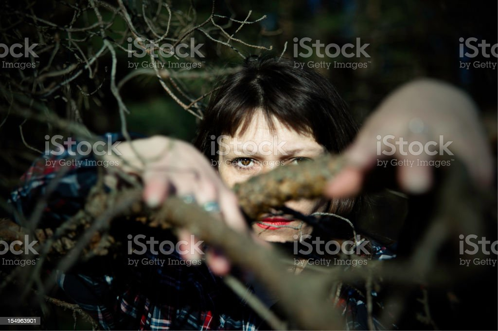 women behind the dry pine branches royalty-free stock photo