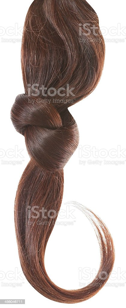 Women brown haired stock photo