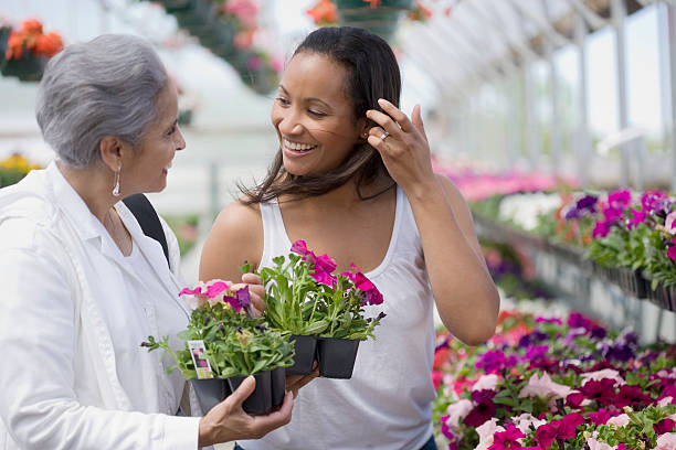 Women choosing plants stock photo