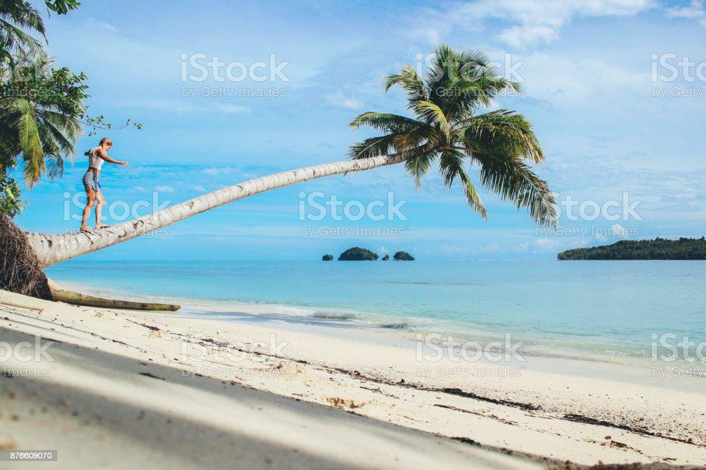 Women climbing on coconut palm tree stock photo