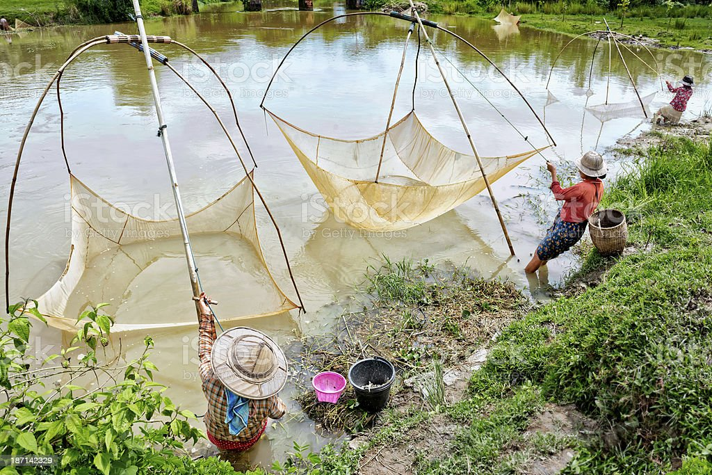Women Fishing with Nets by the River stock photo