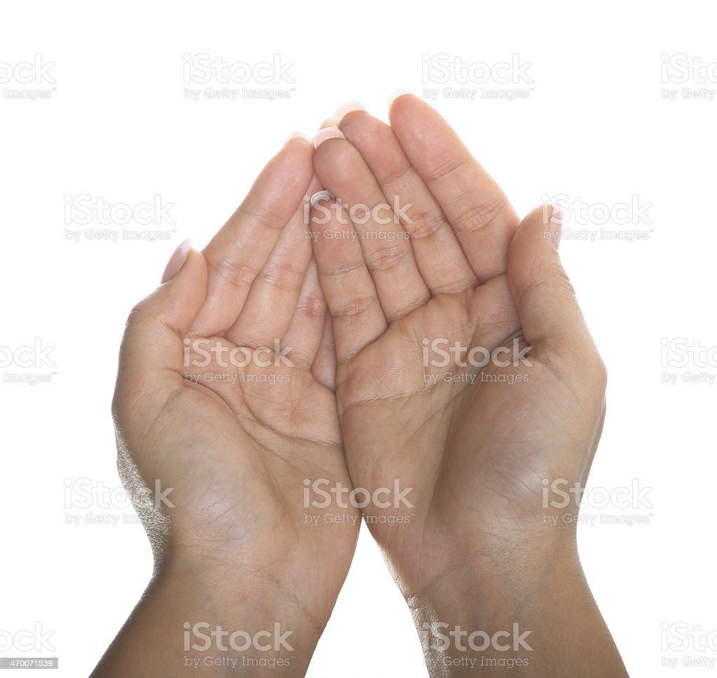 Women Hand (Isolated) royalty-free stock photo