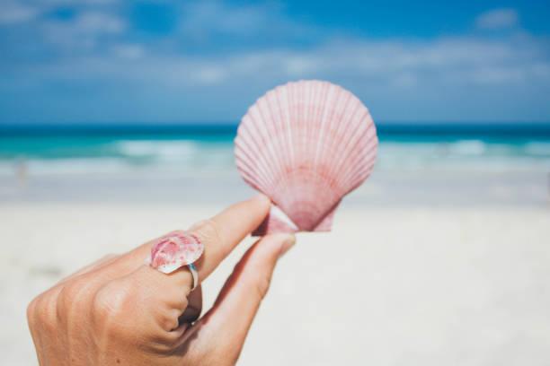 frauen halten muschel am strand - shell tattoos stock-fotos und bilder