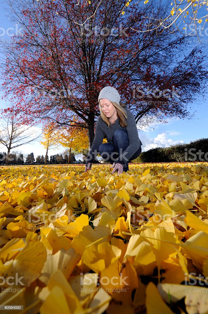 women in park picking up autume leaves royalty-free stock photo