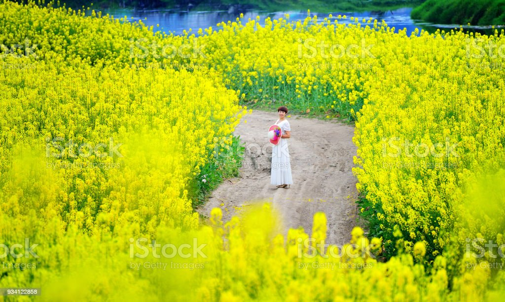 Women in the blooming flowers stock photo