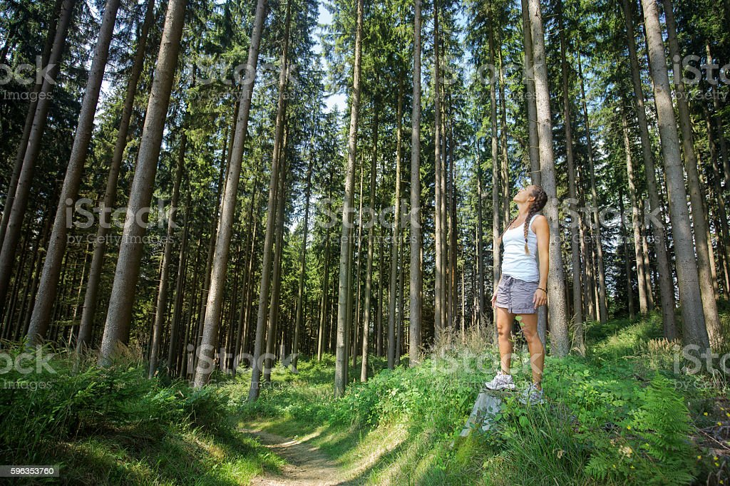 Women in the forest royalty-free stock photo