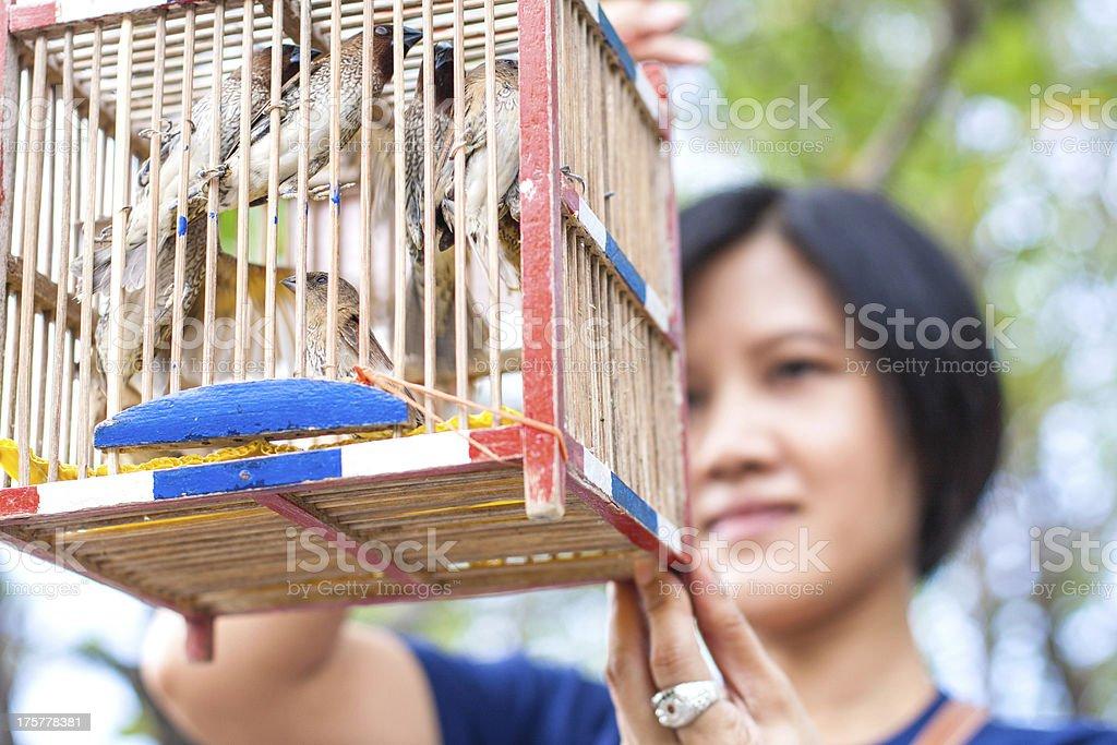 women make merit a bird royalty-free stock photo