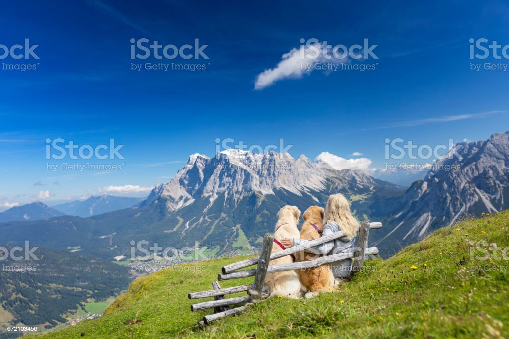 Women on Bench enjoy view with her dogs - Zugspitze, Alps stock photo