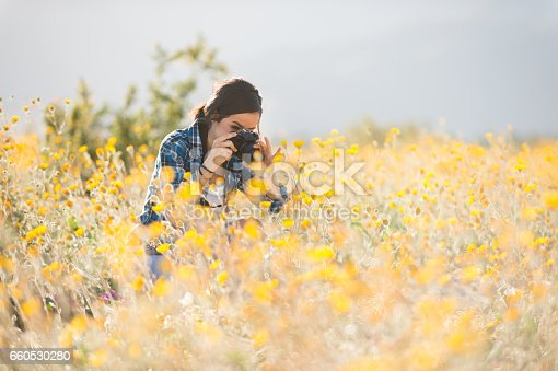 A Hispanic women photographer, photographing the wild flowers.  Super bloom in the spring.