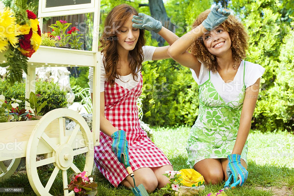 Women Planting Flower in a home garden. royalty-free stock photo