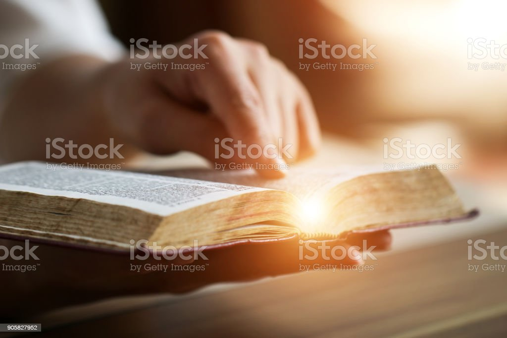 Women reading the Holy Bible. stock photo