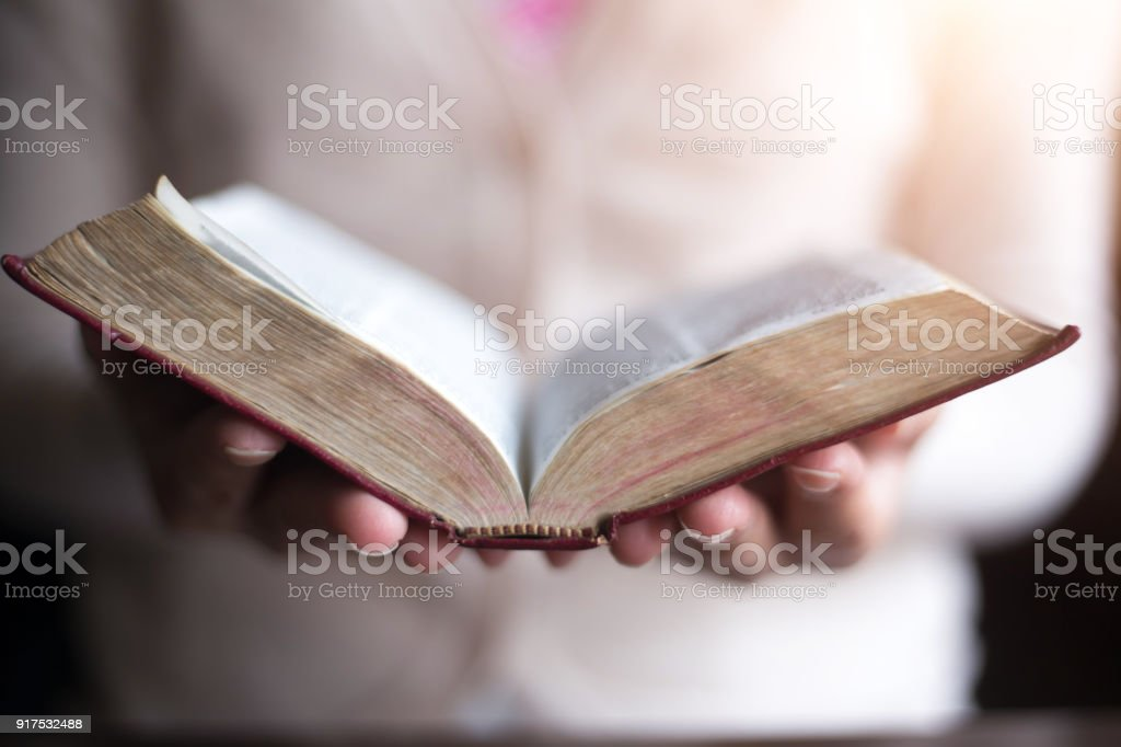 Women reading the Holy Bible.,women reading stock photo