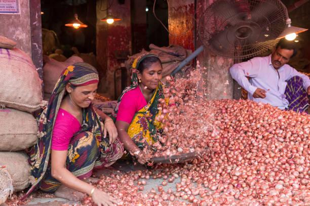 Dhaka, Bangladesch - 29. Juli 2016: Frauen entfernen überschüssige rote Zwiebelschalen auf Shyambazar Gemüsemarkt – Foto