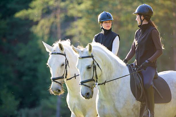 mujer montando caballos - equitación fotografías e imágenes de stock