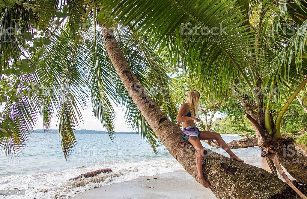 Women sitting on coconut palm stock photo